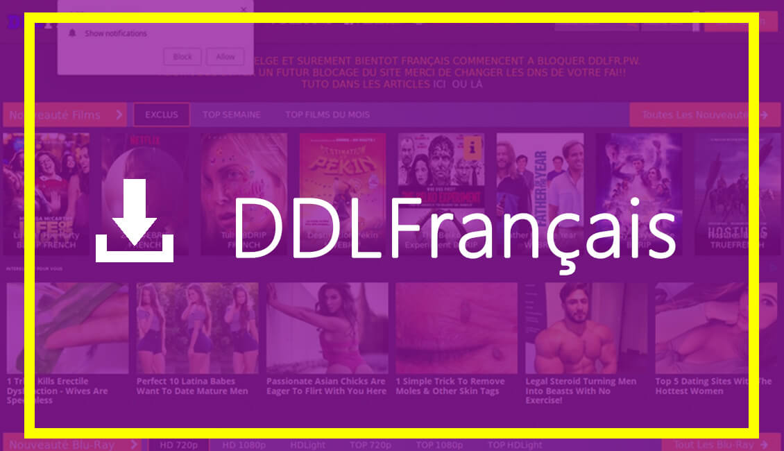 DDLFR - Direct Download LINk Français (Fr)